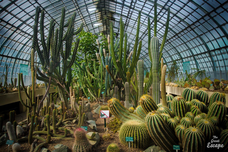 Paris l 39 t les serres d 39 auteuil the great escape for Le jardin des serres d auteuil